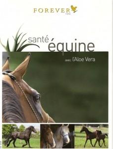 Santé chevaux